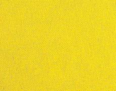 Yellow_55