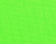Neon-Green_61