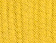 Yellow_355